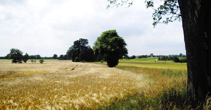landschaftsstrukturen